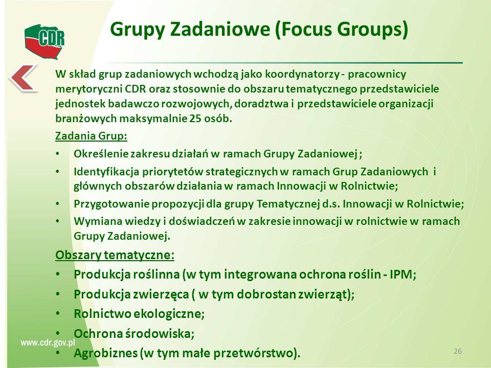 Grupy Zadaniowe (Focus Groups)