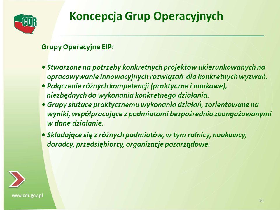 Koncepcja Grup Operacyjnych