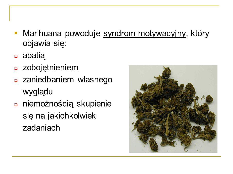 Marihuana powoduje syndrom motywacyjny, który objawia się: