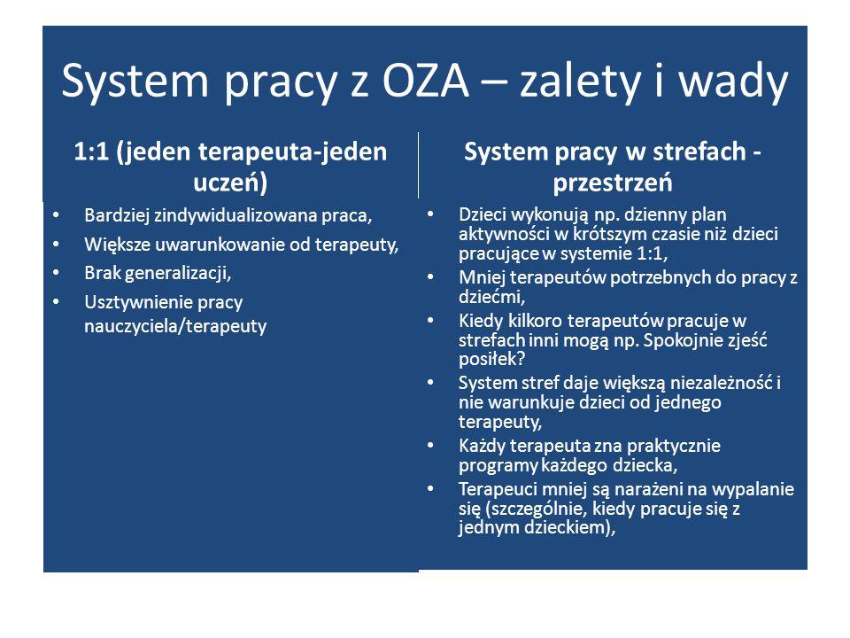 1:1 (jeden terapeuta-jeden uczeń) System pracy w strefach - przestrzeń