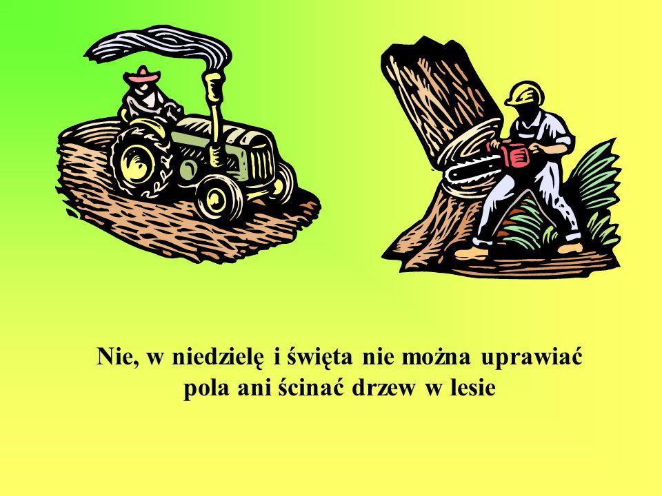 Nie, w niedzielę i święta nie można uprawiać pola ani ścinać drzew w lesie
