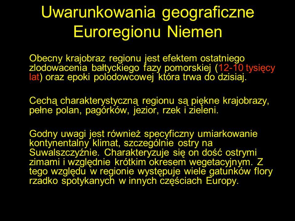 Uwarunkowania geograficzne Euroregionu Niemen