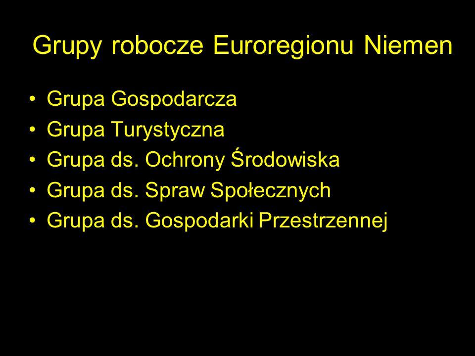 Grupy robocze Euroregionu Niemen
