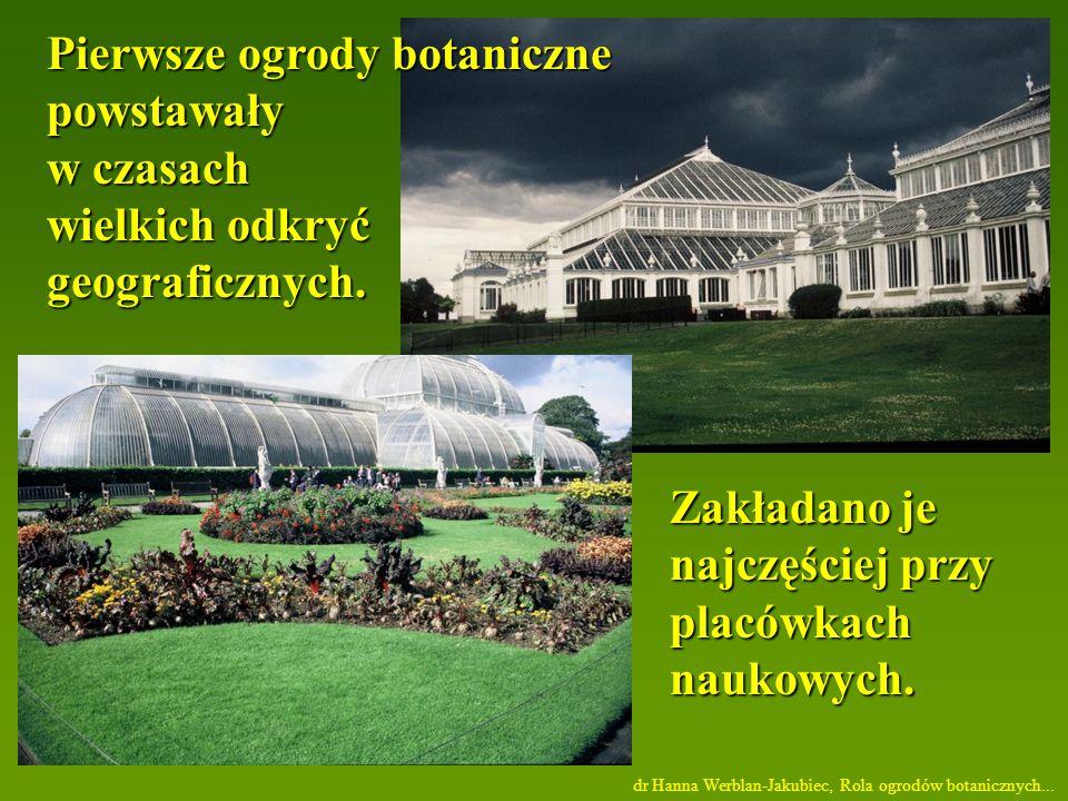 Pierwsze ogrody botaniczne powstawały w czasach wielkich odkryć