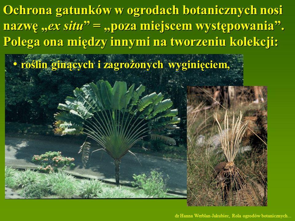 roślin ginących i zagrożonych wyginięciem,