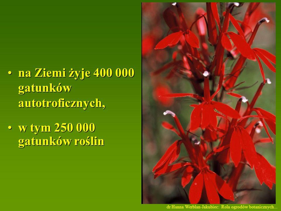 na Ziemi żyje 400 000 gatunków autotroficznych,