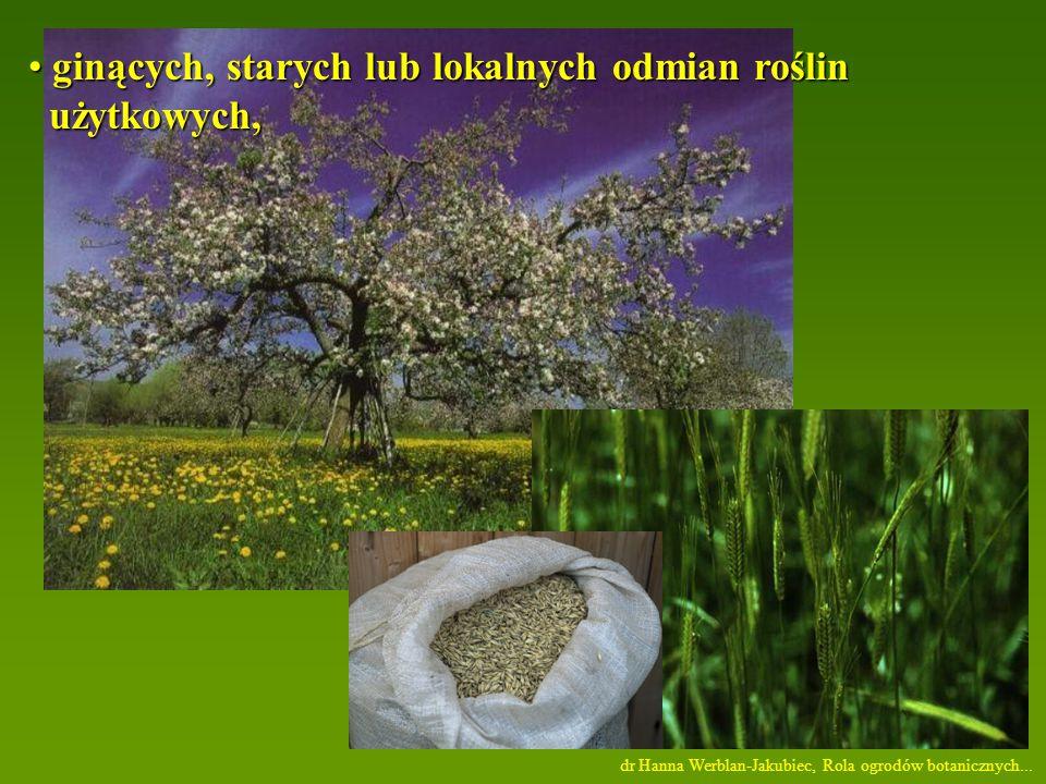ginących, starych lub lokalnych odmian roślin użytkowych,