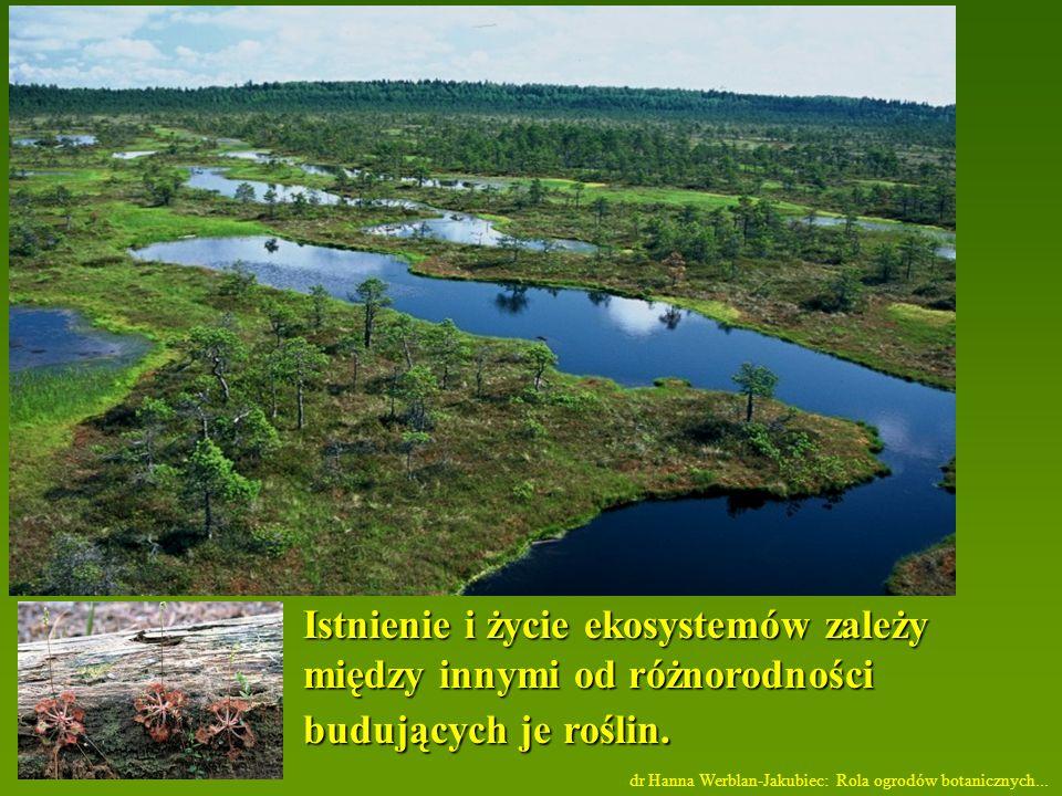 Istnienie i życie ekosystemów zależy między innymi od różnorodności budujących je roślin.
