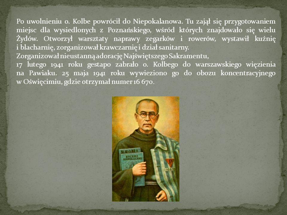 Po uwolnieniu o. Kolbe powrócił do Niepokalanowa
