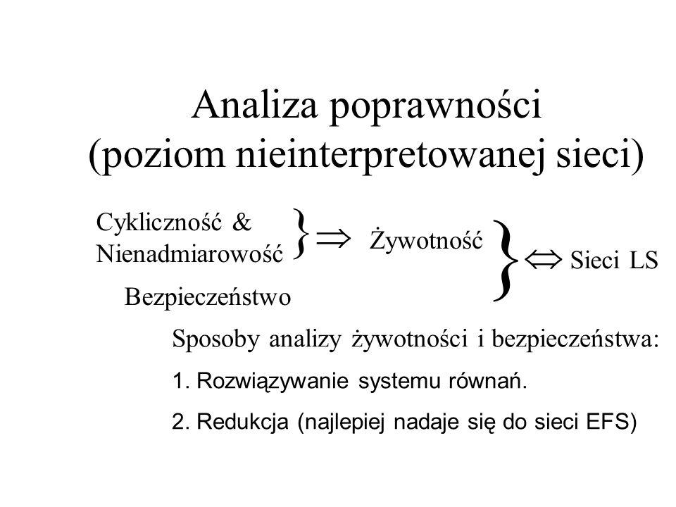 Analiza poprawności (poziom nieinterpretowanej sieci)
