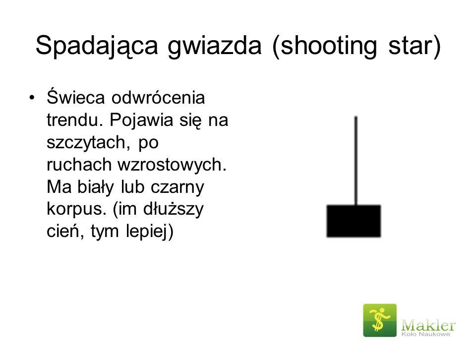 Spadająca gwiazda (shooting star)