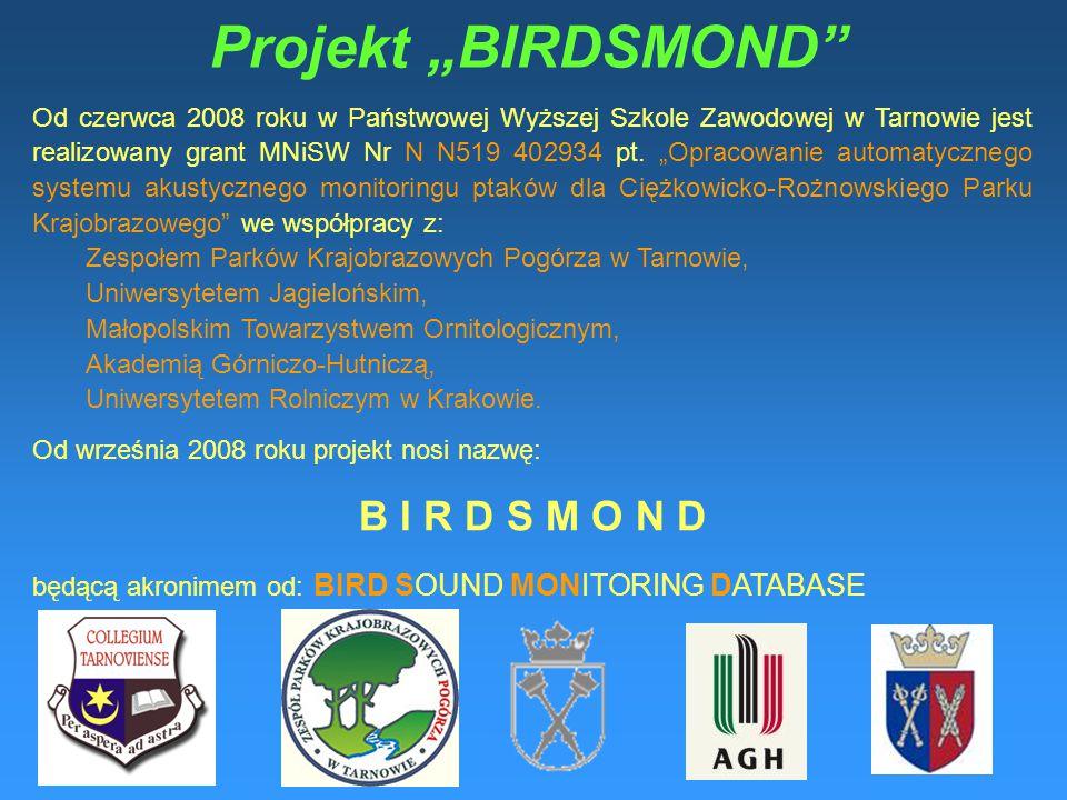 """Projekt """"BIRDSMOND B I R D S M O N D"""