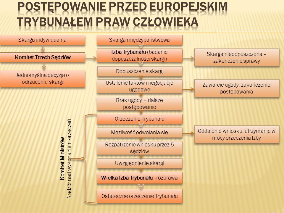 Postępowanie przed Europejskim Trybunałem Praw Człowieka