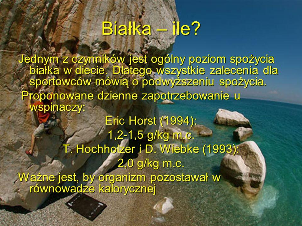 T. Hochholzer i D. Wiebke (1993):