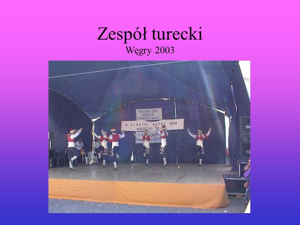 Zespół turecki Węgry 2003