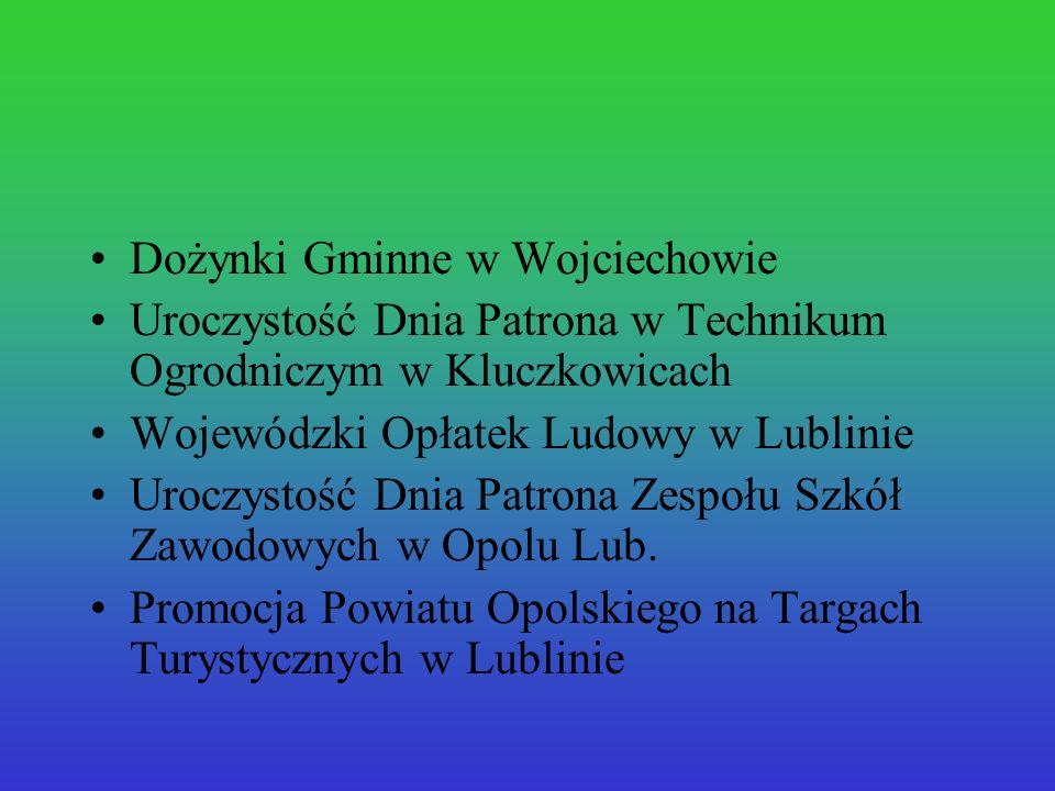 Dożynki Gminne w Wojciechowie