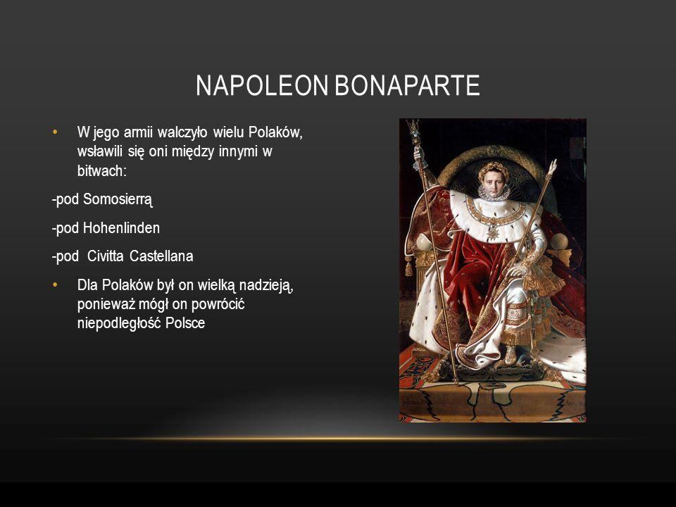 Napoleon bonaparteW jego armii walczyło wielu Polaków, wsławili się oni między innymi w bitwach: