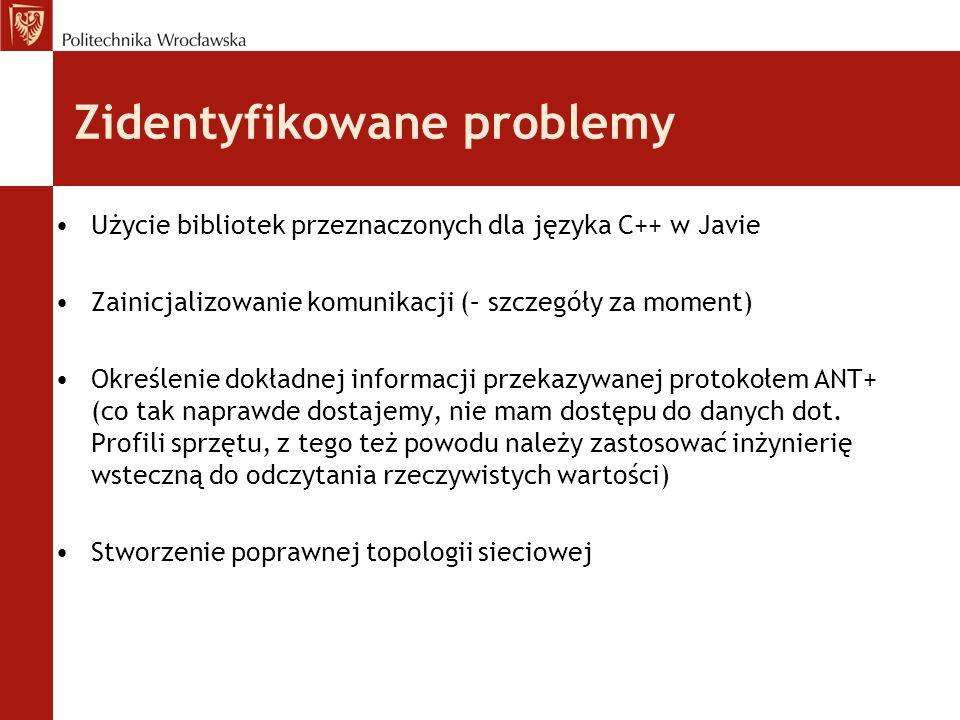 Zidentyfikowane problemy