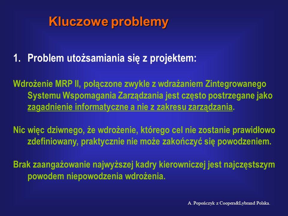 Kluczowe problemy Problem utożsamiania się z projektem: