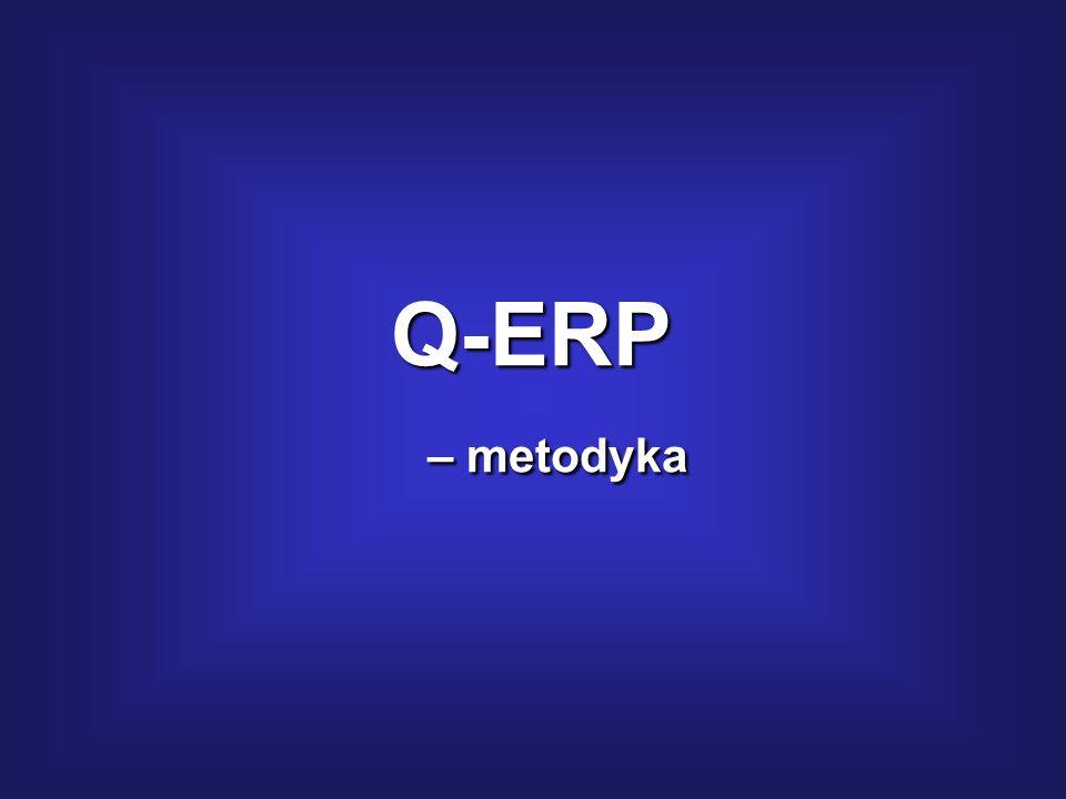 Q-ERP – metodyka