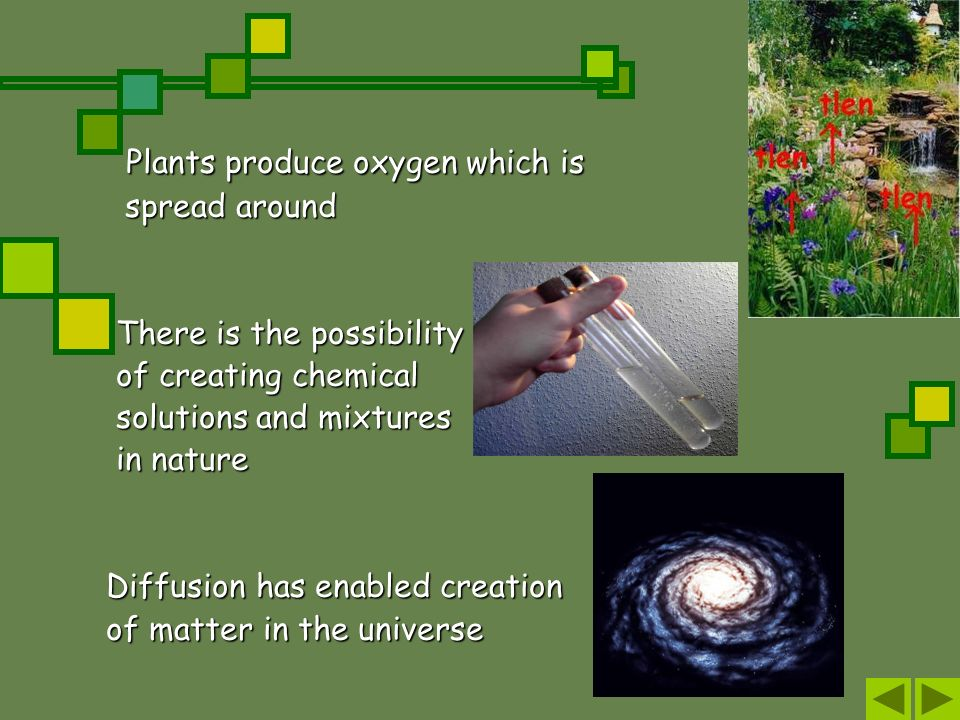 Plants produce oxygen which is