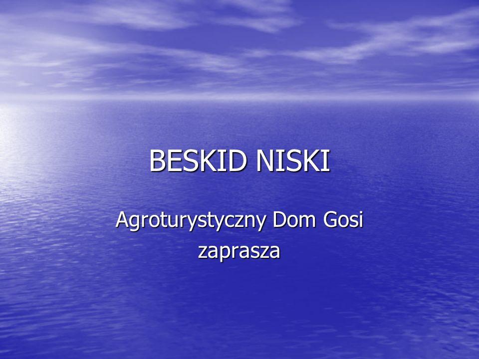 Agroturystyczny Dom Gosi zaprasza