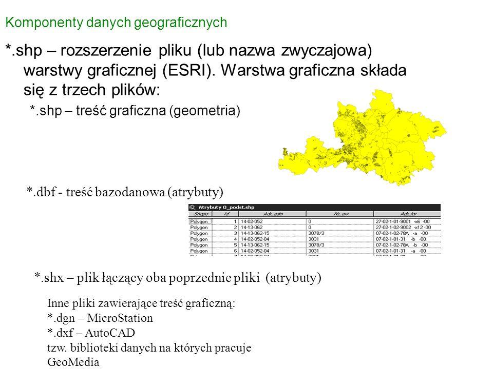 Komponenty danych geograficznych