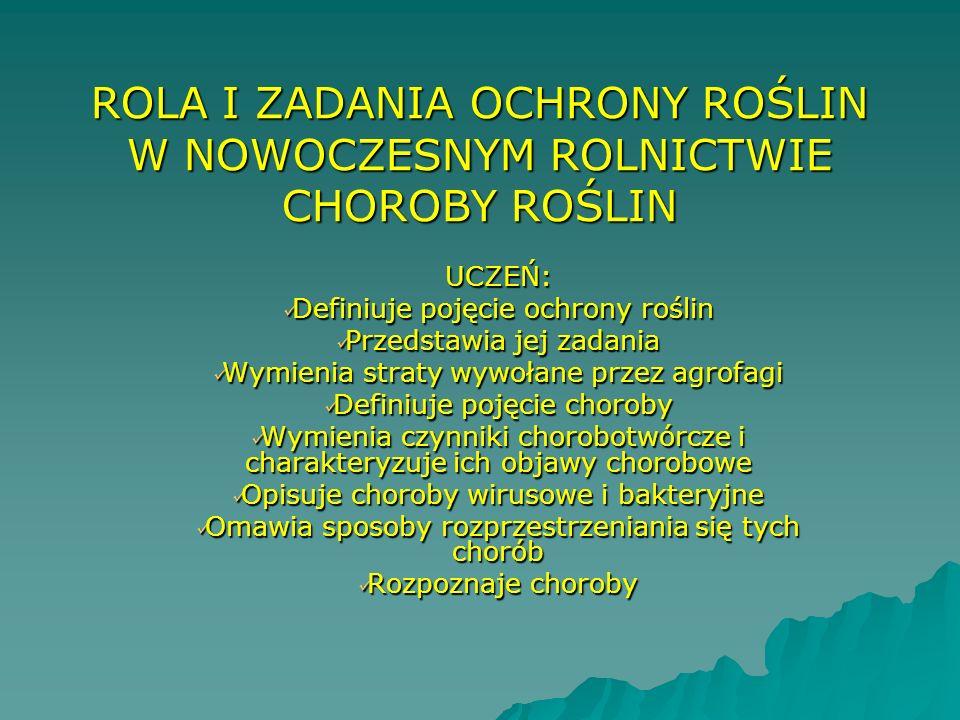 ROLA I ZADANIA OCHRONY ROŚLIN W NOWOCZESNYM ROLNICTWIE CHOROBY ROŚLIN