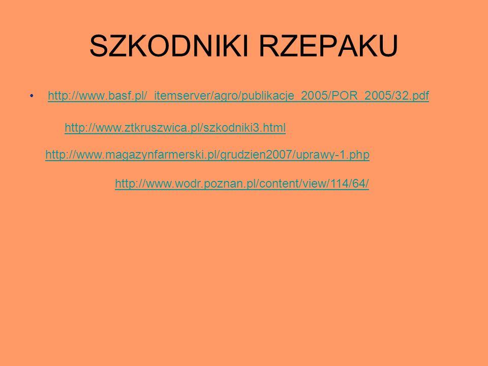 SZKODNIKI RZEPAKU http://www.basf.pl/_itemserver/agro/publikacje_2005/POR_2005/32.pdf. http://www.ztkruszwica.pl/szkodniki3.html.