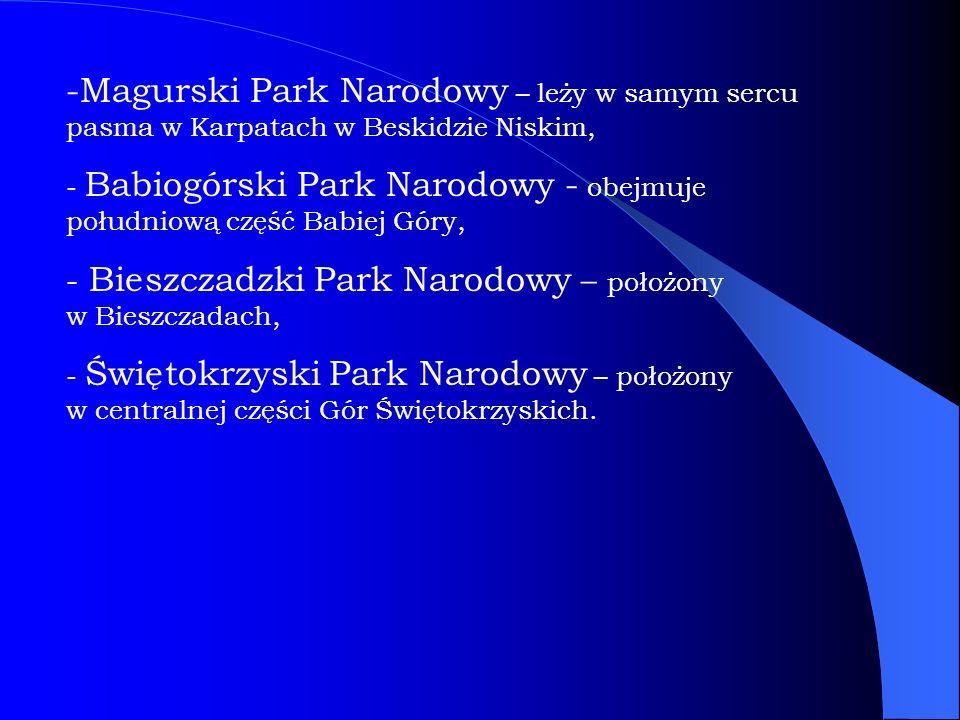 Magurski Park Narodowy – leży w samym sercu pasma w Karpatach w Beskidzie Niskim,