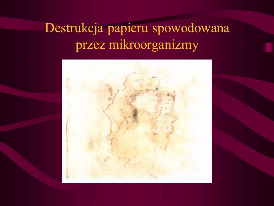 Destrukcja papieru spowodowana przez mikroorganizmy