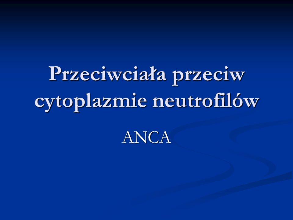 Przeciwciała przeciw cytoplazmie neutrofilów