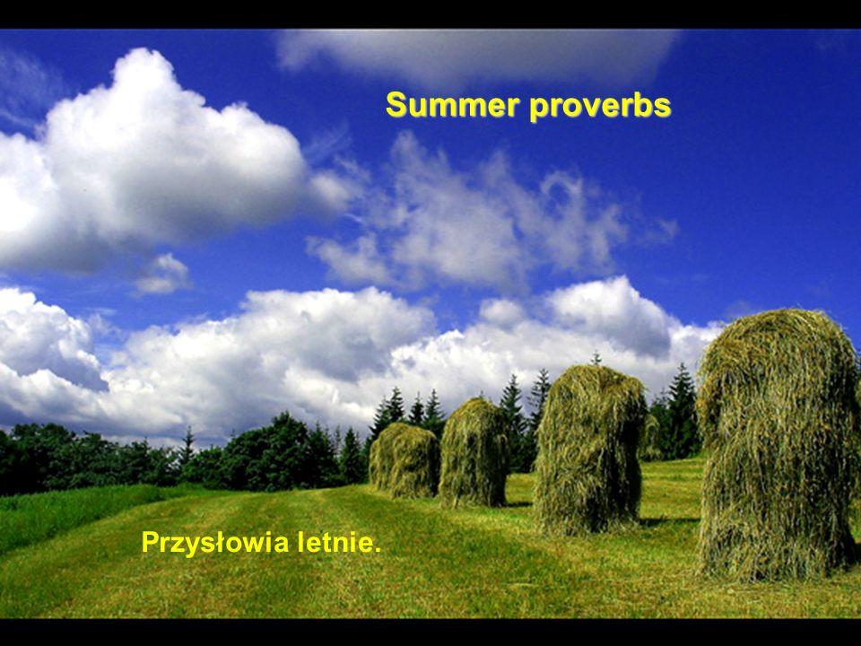Summer proverbs Przysłowia letnie.