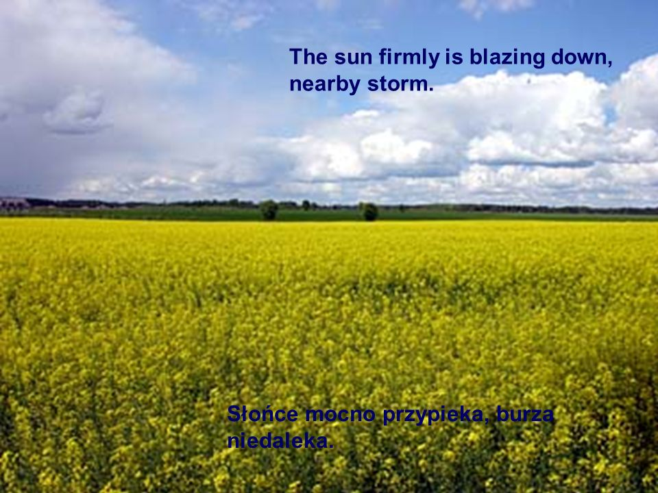 The sun firmly is blazing down, nearby storm.