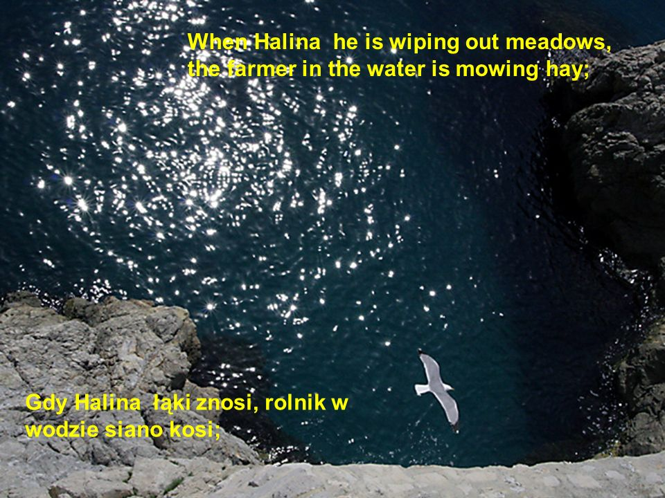 When Halina he is wiping out meadows, the farmer in the water is mowing hay;