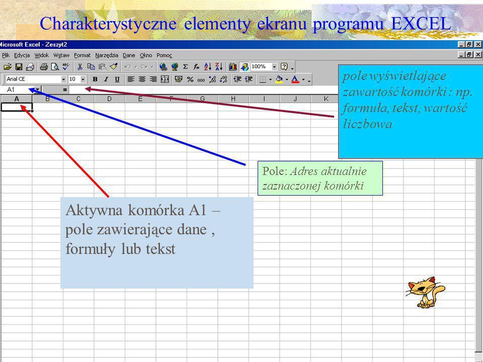 Charakterystyczne elementy ekranu programu EXCEL