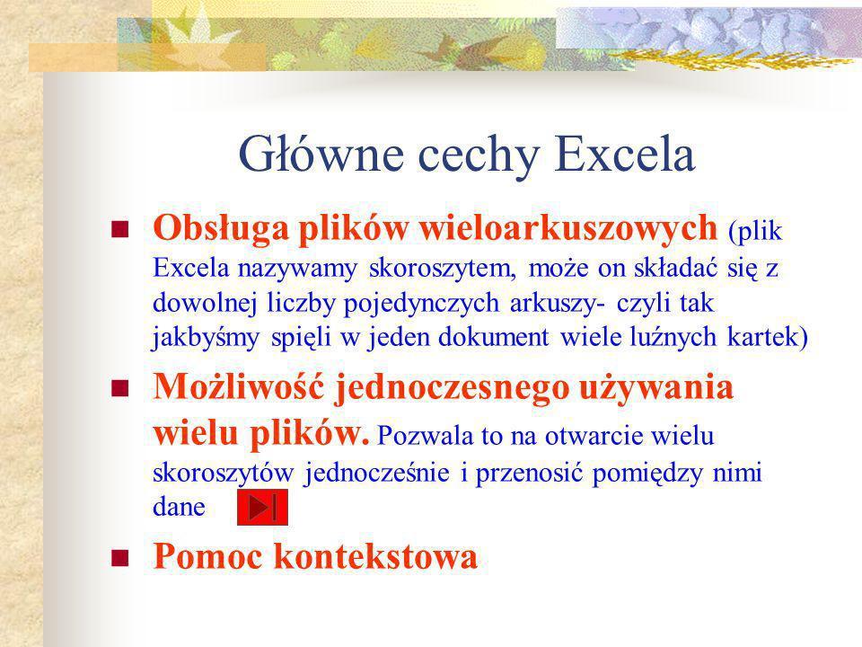 Główne cechy Excela