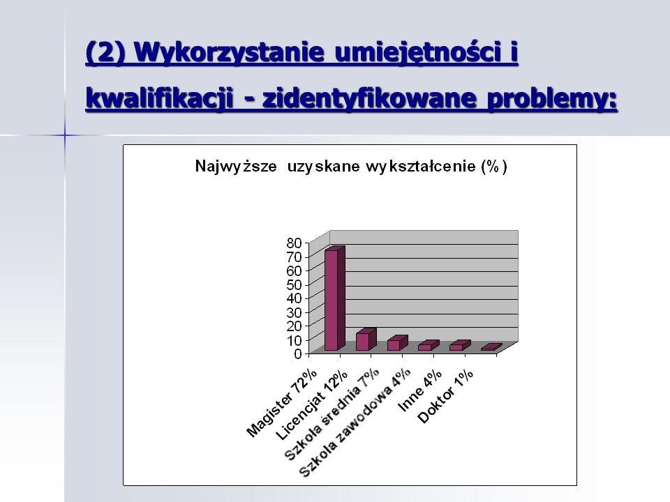 (2) Wykorzystanie umiejętności i kwalifikacji - zidentyfikowane problemy: