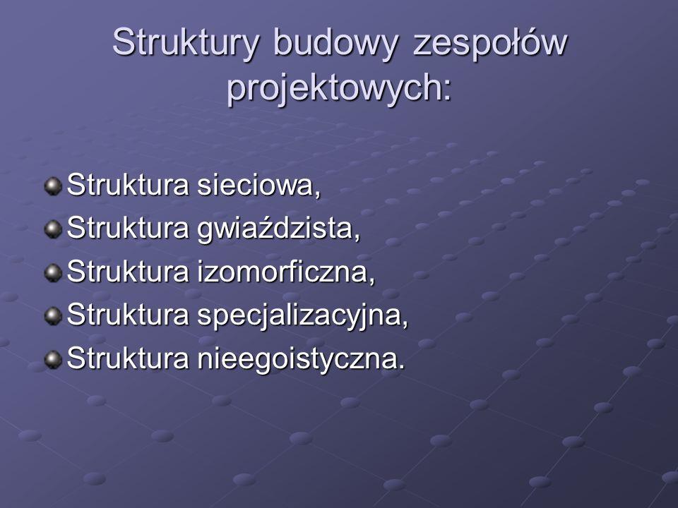Struktury budowy zespołów projektowych: