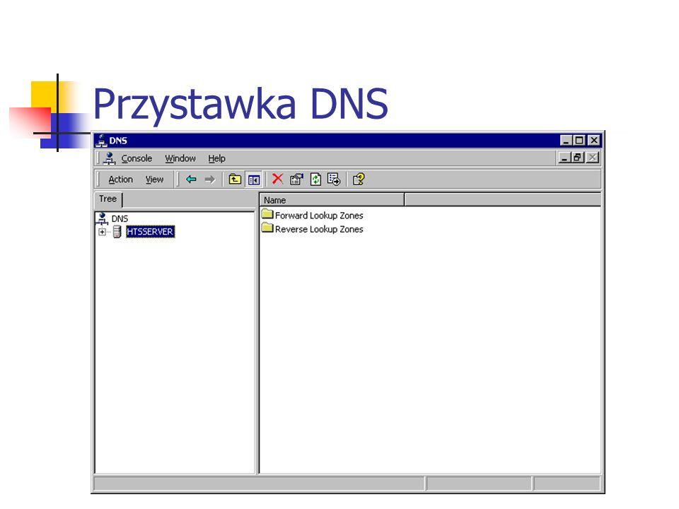 Przystawka DNS Instalacja Mój komputer->Panel sterowania->Dodaj/usuń programy