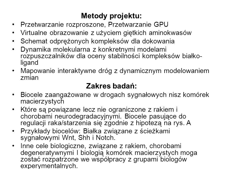 Metody projektu: Zakres badań: