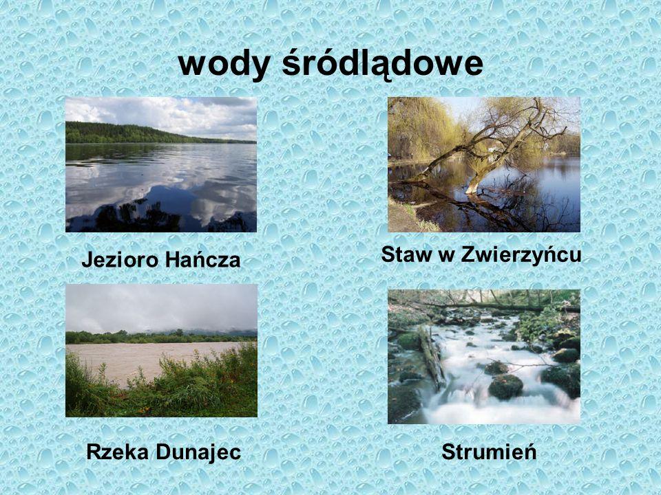 wody śródlądowe Staw w Zwierzyńcu Jezioro Hańcza Rzeka Dunajec