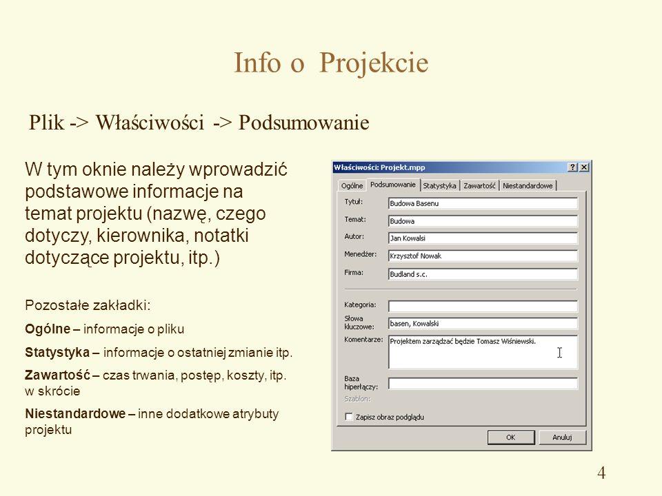 Info o Projekcie Plik -> Właściwości -> Podsumowanie