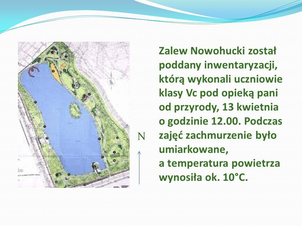 Zalew Nowohucki został poddany inwentaryzacji, którą wykonali uczniowie klasy Vc pod opieką pani od przyrody, 13 kwietnia o godzinie 12.00. Podczas zajęć zachmurzenie było umiarkowane, a temperatura powietrza wynosiła ok. 10°C.