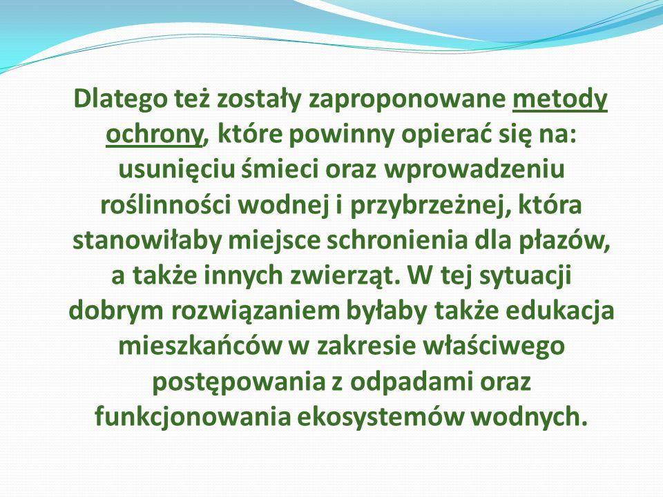 Dlatego też zostały zaproponowane metody ochrony, które powinny opierać się na: usunięciu śmieci oraz wprowadzeniu roślinności wodnej i przybrzeżnej, która stanowiłaby miejsce schronienia dla płazów, a także innych zwierząt.