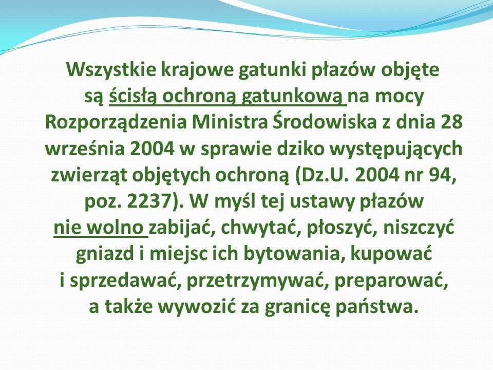 Wszystkie krajowe gatunki płazów objęte są ścisłą ochroną gatunkową na mocy Rozporządzenia Ministra Środowiska z dnia 28 września 2004 w sprawie dziko występujących zwierząt objętych ochroną (Dz.U.