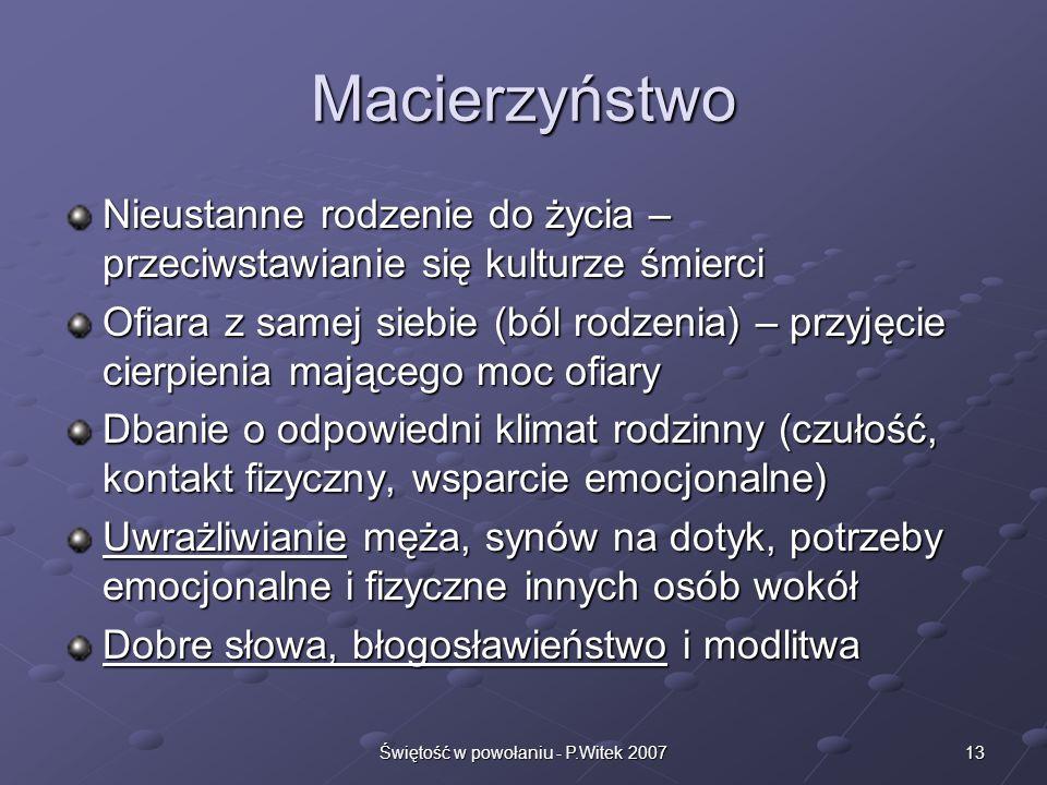 Świętość w powołaniu - P.Witek 2007