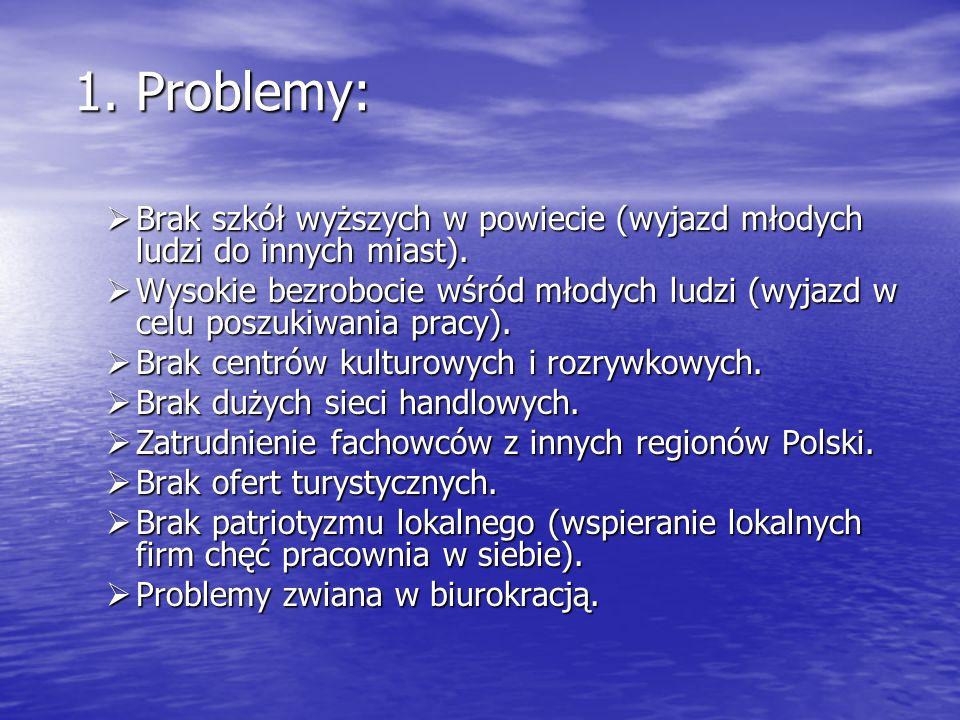 1. Problemy: Brak szkół wyższych w powiecie (wyjazd młodych ludzi do innych miast).