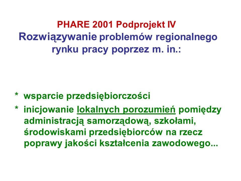PHARE 2001 Podprojekt IV Rozwiązywanie problemów regionalnego rynku pracy poprzez m. in.: