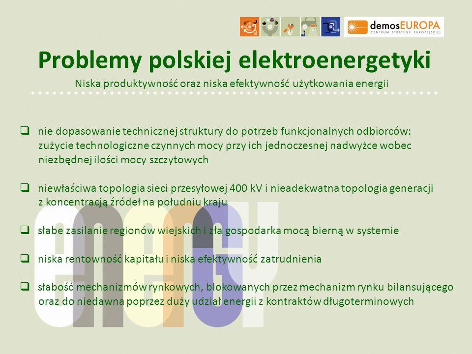 Problemy polskiej elektroenergetyki